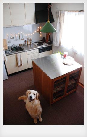 両面づかいのアイランド型作業台・食器棚・カウンター 5023イメージ-6