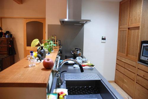 手前に棚のあるステンレスキッチンをオーダー 732イメージ-1