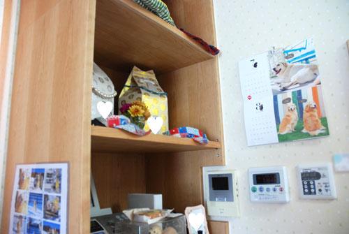 愛犬・愛猫 ペットの祭壇を兼ねたカジュアルお仏壇 5072イメージ-2