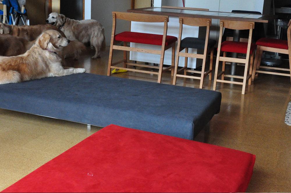 ドッグソファ兼デイベッド 大型犬と一緒に過ごす方の為のラムース生地 6013イメージ-5